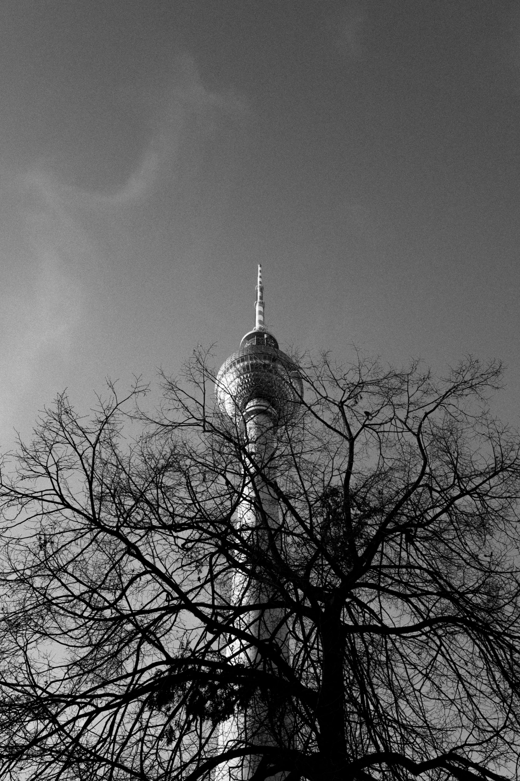 Hochkant Berlin